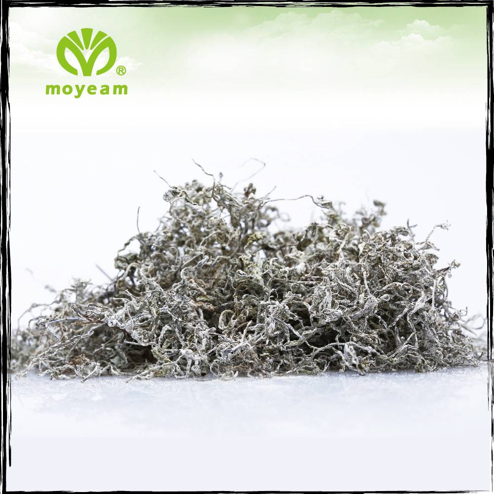 moyeam vine tea (snow-white tea)