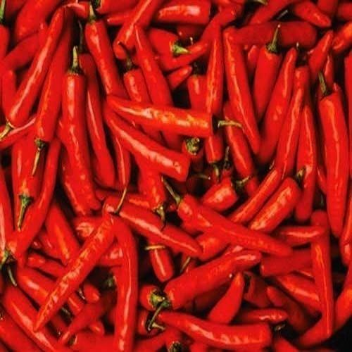 Sweet Paprika/Sweet Pepper Dry Red Chillies