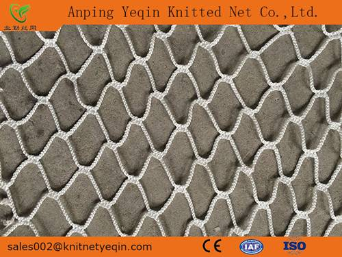 Anping Factory/Manufacturer High Quality PE/PP Knotless Sports Net