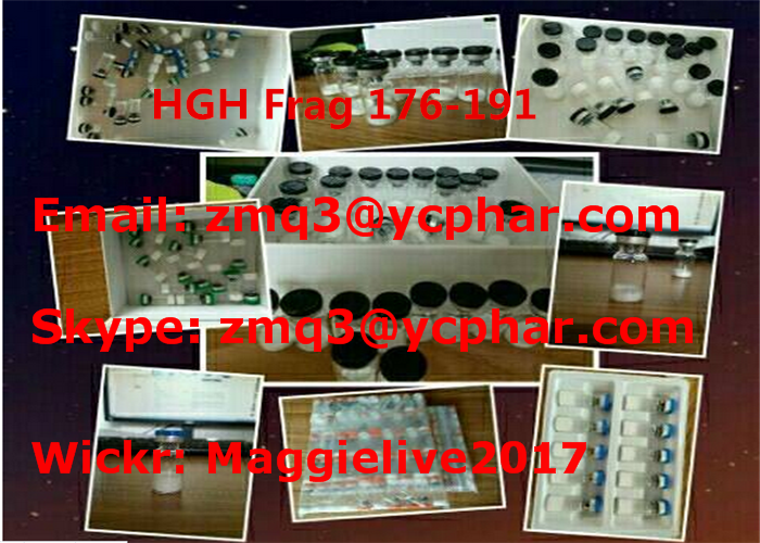HGH FRAG 176-191 Muscle Growth Hormone / Body Building Peptides For Fat Loss