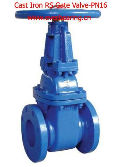 Cast Iron Rising Gate Valve-DIN PN16