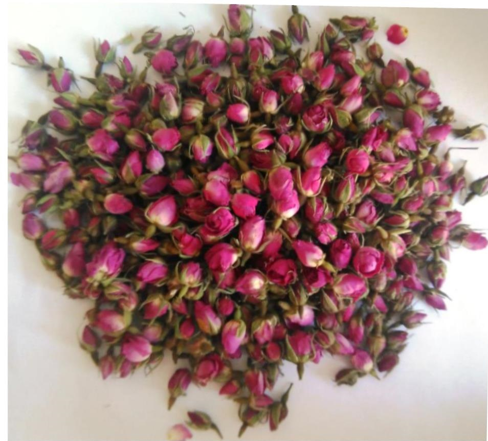 High Quality Dried Damask Rose