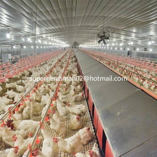 poultry farm equipment for breeder