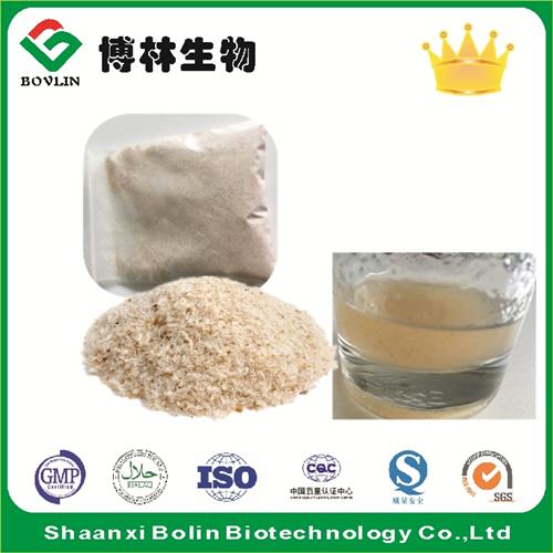 Manufacturer Supply High Purity Psyllium Husk Powder for Weight Loss