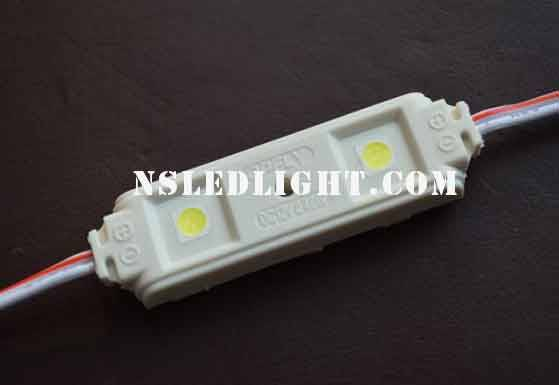 Waterproof SMD5050 2pcs led lighting module 12V 0.48W Anti-flaming ABS material housing