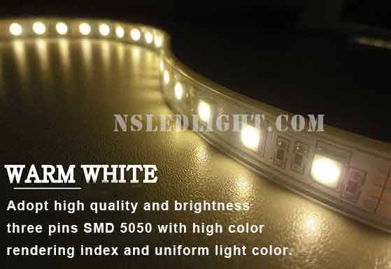 Best Price DC12V SMD 5050 led tape 120leds/m 24.8W IP20 IP65 IP66 IP68 with CE RoHS