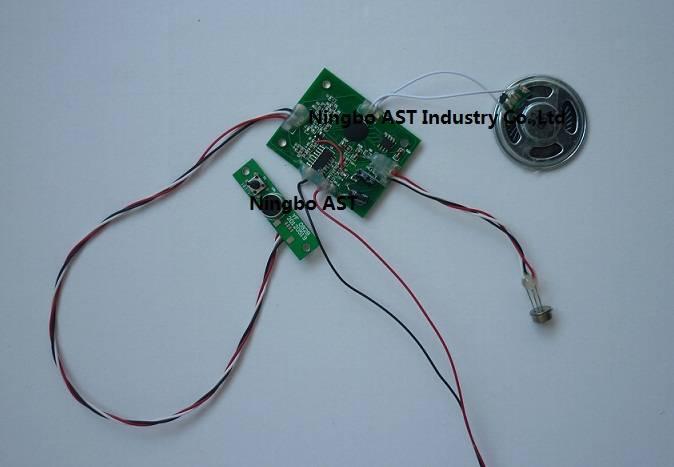 PIR Sound Module