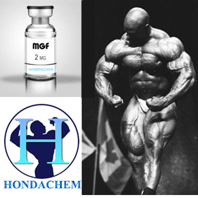 GMP Grade Human Peptides Mgf Lyophilized Powder 2mg/Vial for body building