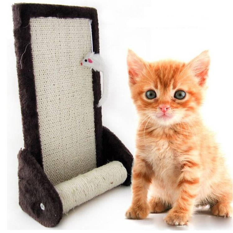 High Quality of Cat Play Toys of Cat Scratcher Board