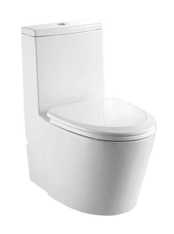 Dual Flush One Piece Eco-Friendly High Efficiency International Big Plus Ceramic Toilet- TA8101