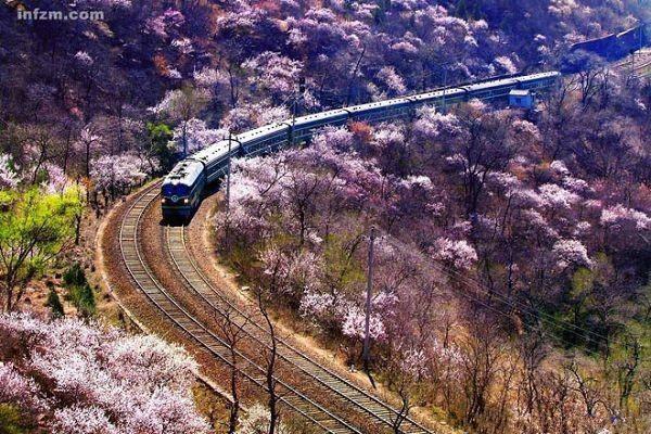 Lianyungang to Dushanbe railway transportation