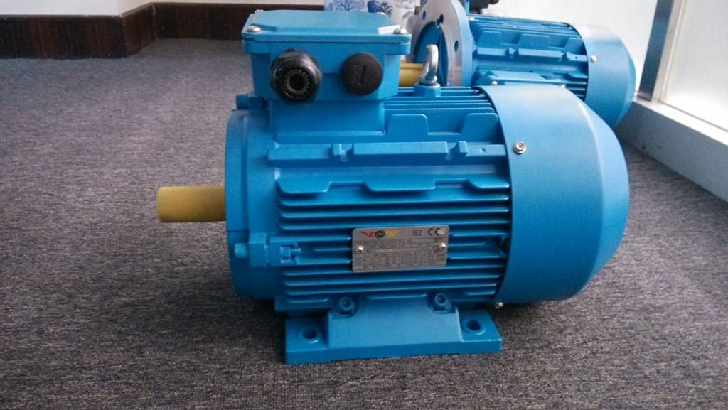 Y Series Three Phase Induction Motor from 0.55KW to 315KW