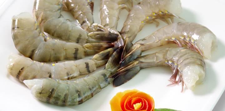 HLSO Black Tiger Shrimp