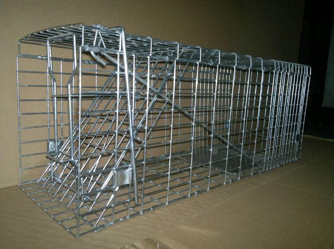 Animal Cage Traps