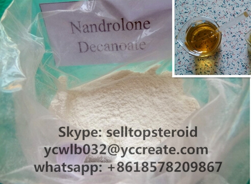 Deca Durabolin Powder Muscle Growth Sterioids Nandrolone Decanoate CAS 360-70-3
