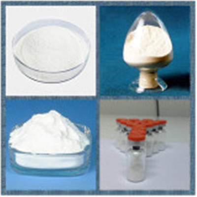Factory Supply High Quality Praziquantel CAS Registry Number: 55268-74-1