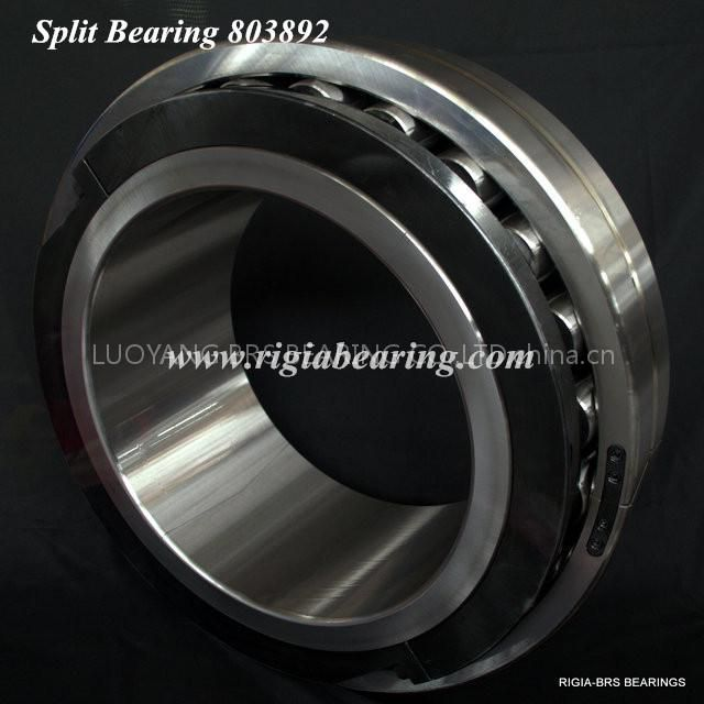 Split bearing for conveyor belts 803892