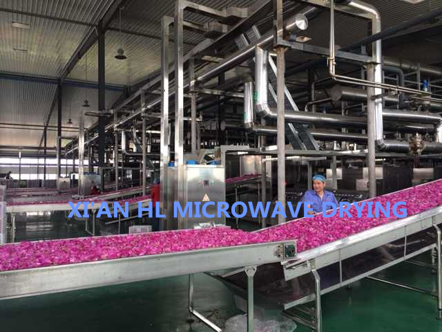 Fully Automatically Microwave Drying Equipment