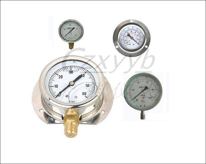 oil-filled pressure meter