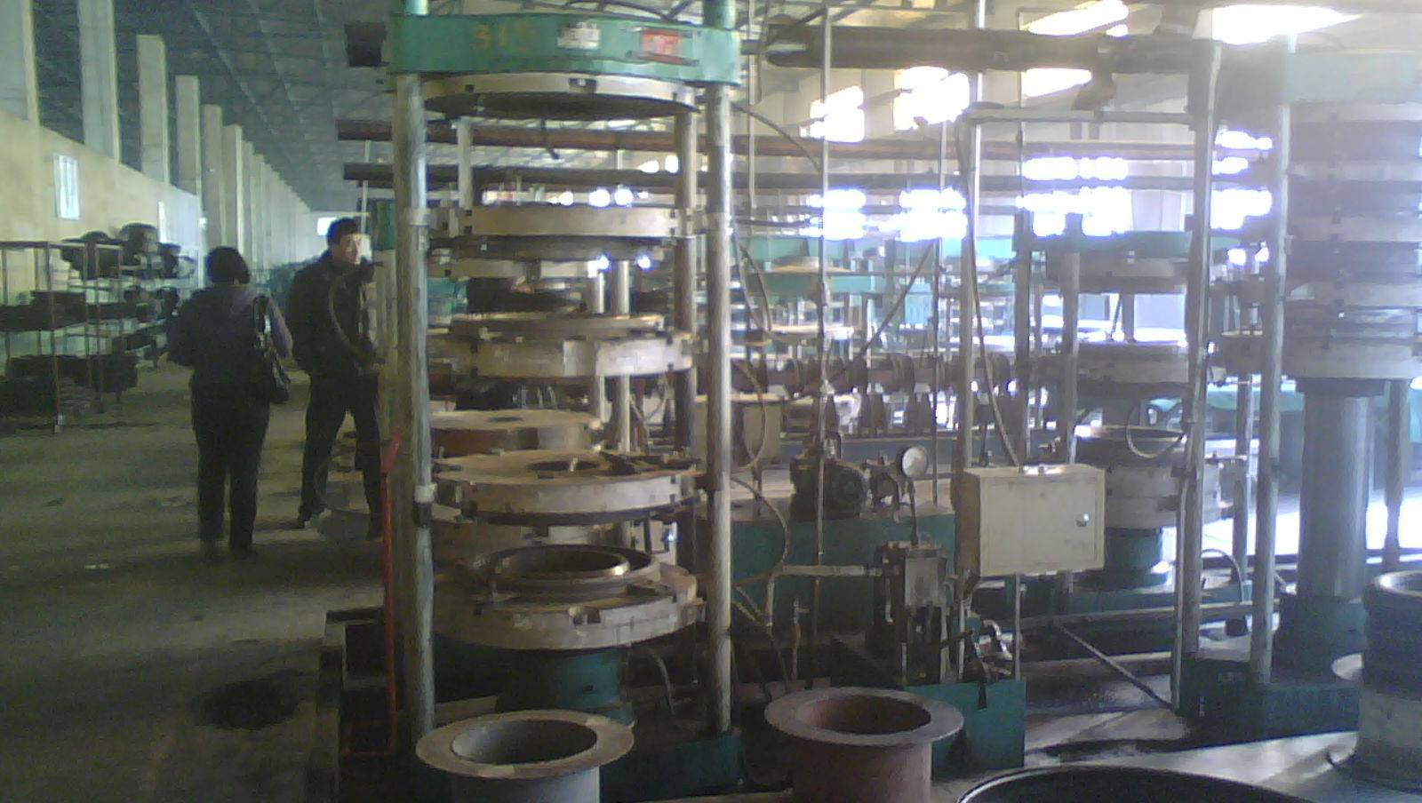 tire shaping and curing press