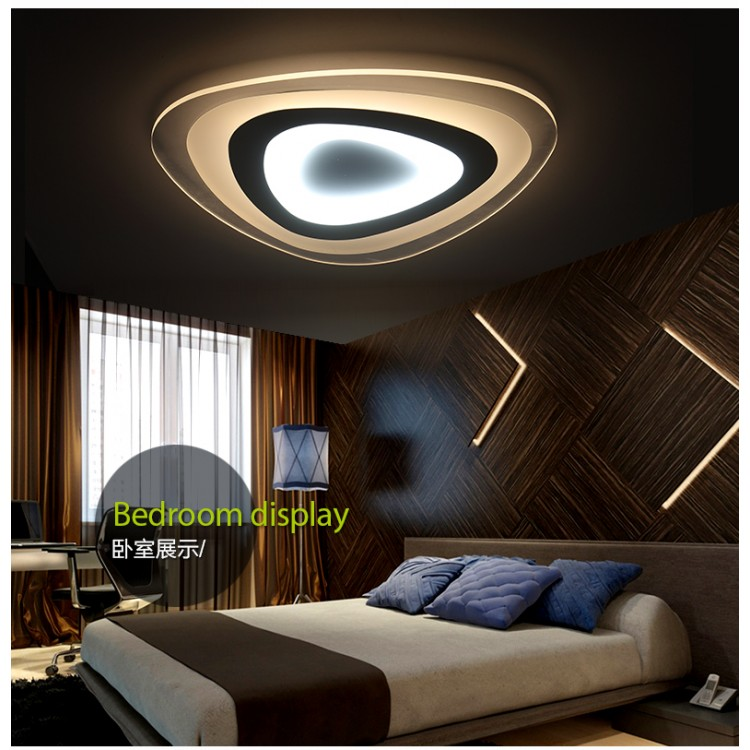 Fashion design ceiling light X1355