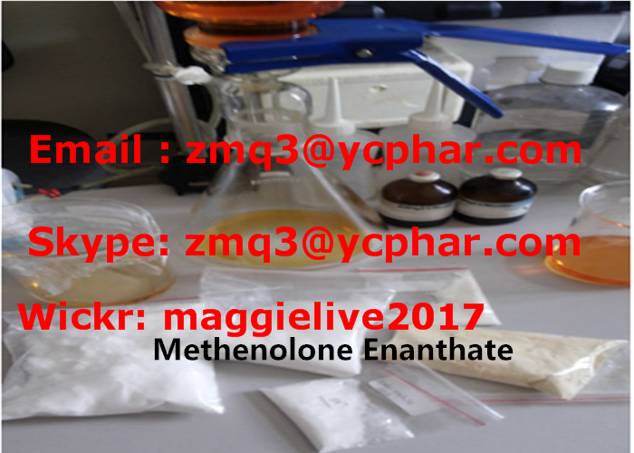 Pharmaceutical Manufacturer CAS No. 303-42-4 Methenolone Enanthate