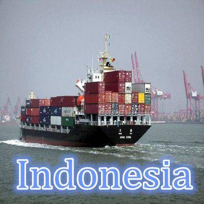 sea freight shipping to Indonesia  from Guangzhou/Shenzhen,China