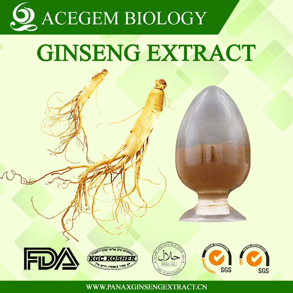 EC396 Standard Panax Ginseng Root extract with 20 percent ginsenosides by HPLC