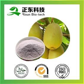 Vegetable & Fruit Enzyme Powder