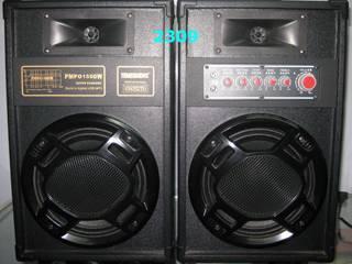 Active Stage Speaker