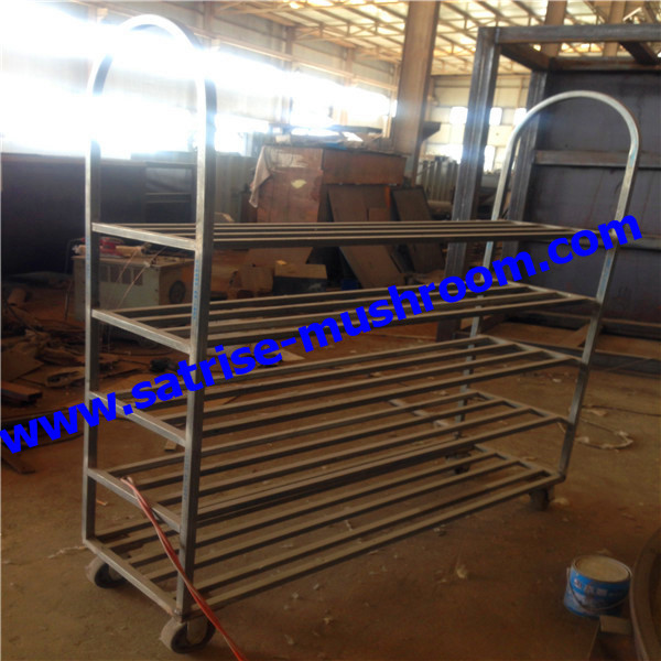 Heavy duty cold storage mushroom growing shelves