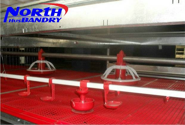 Best Quality Automatic Poultry feeder and drinker poultry farming equipment for sale