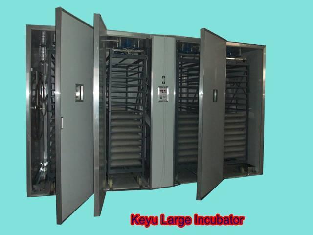 Large egg incubator(8448 chicken eggs)