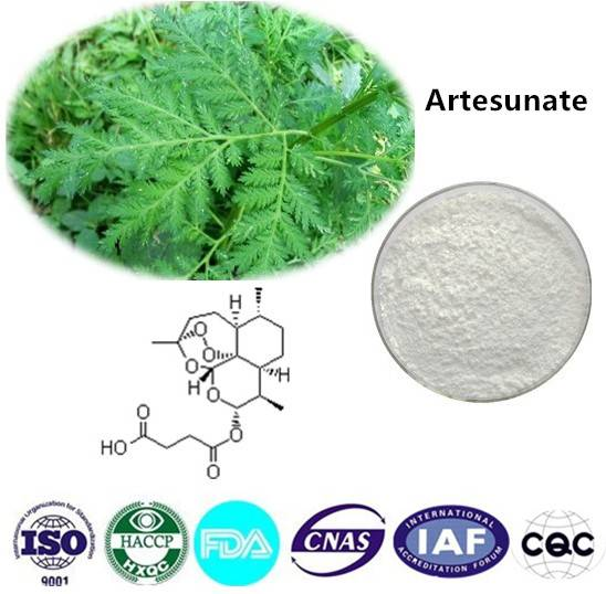 Artesunate  98% CAS NO:88495-63-0 1kg/bag