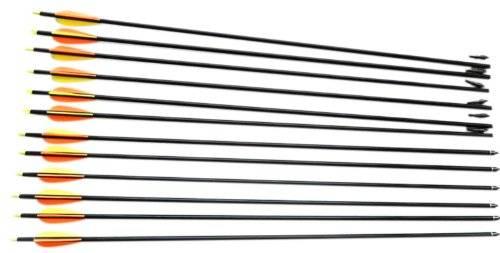 Nocks Fletched Arrows Hunter Fiberglass Color Black Pack of 12