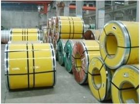 Cold Rolled & Hot Rolled Stainless Steel Coil/Sheet/Plate