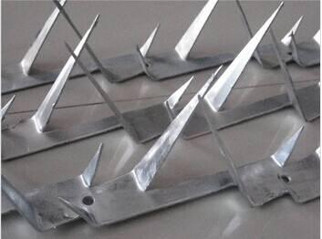 Anti-climb razor spike