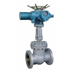 Electric power staion gate valve