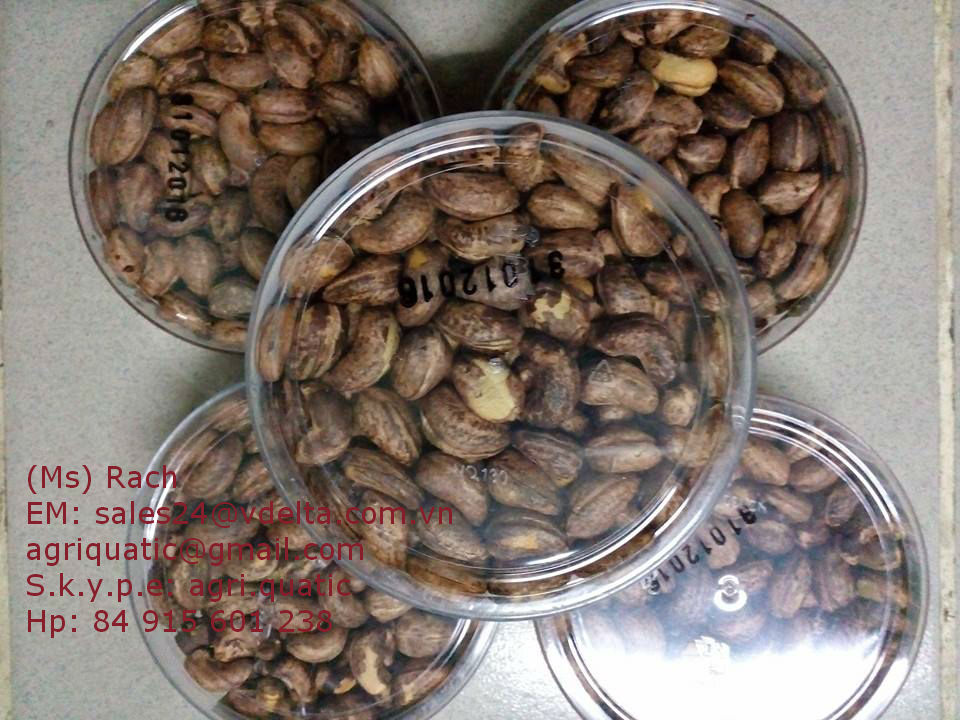 SALTED ROASTED CASHEW NUT ( skype: agri.quatic)