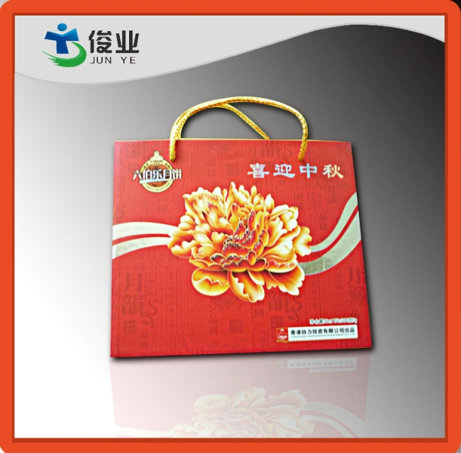 Full Color Printing Handle Gift Bags