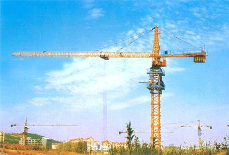 Tower Crane Max. Load 6t (TC5610)-nicole@towercranetc.com