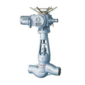 exhaust steam power station globe valve