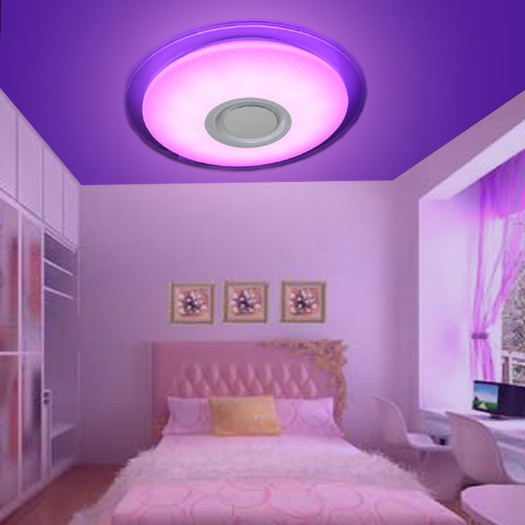 2020 Hot Sale 24W 36W LED Ceiling Light Dimmable Music Ceiling Lamp