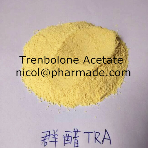 Trenbolone Acetate Anabolic Steroid Raw Powder