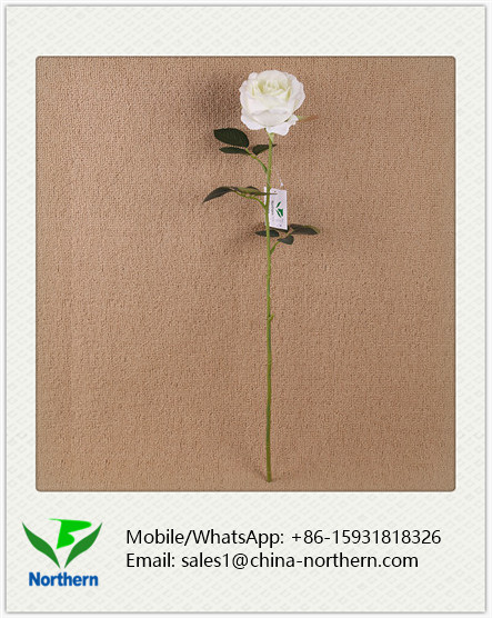 Cheap Fashion Single Stem Artificial Rose for Wedding
