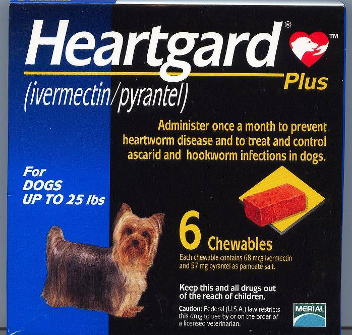HEARTGARD PLUS CHEW