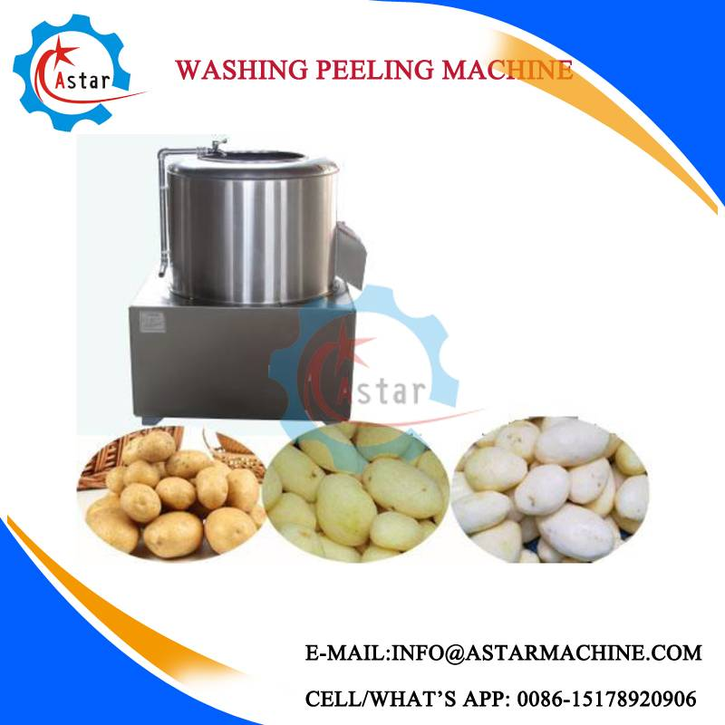Small Home Use Potato Washing & Peeling Machine