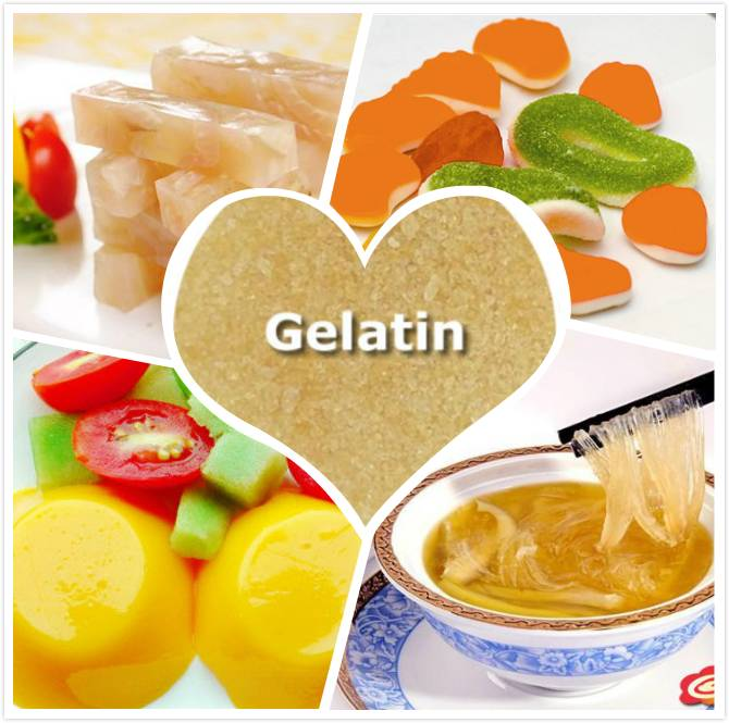 edible gelatin used for food
