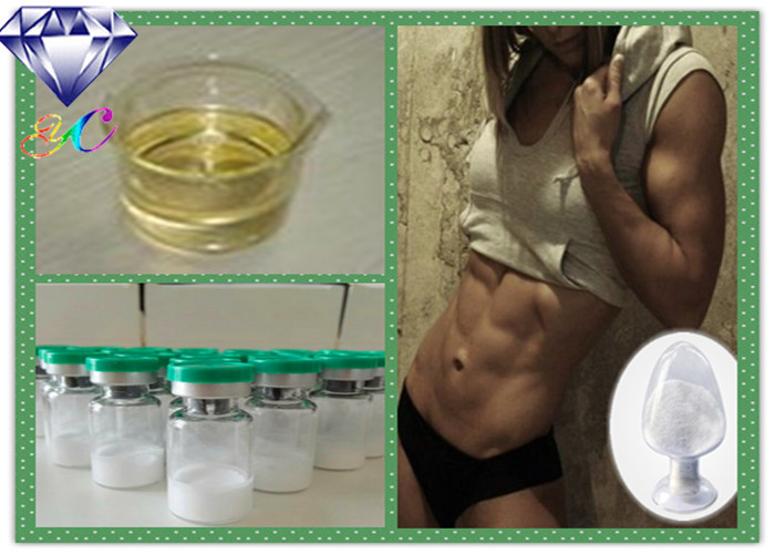 High Purity Boldenone Powder with Testosterone Phenylpropionate For Muscle Building