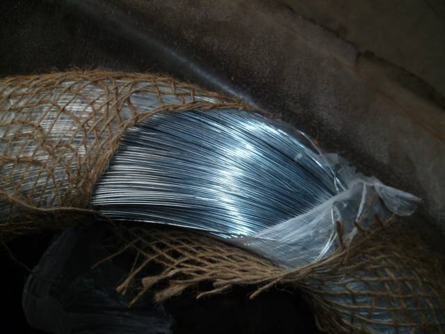 ISO electric Galvanized Wire / ( 50 KG Coil )